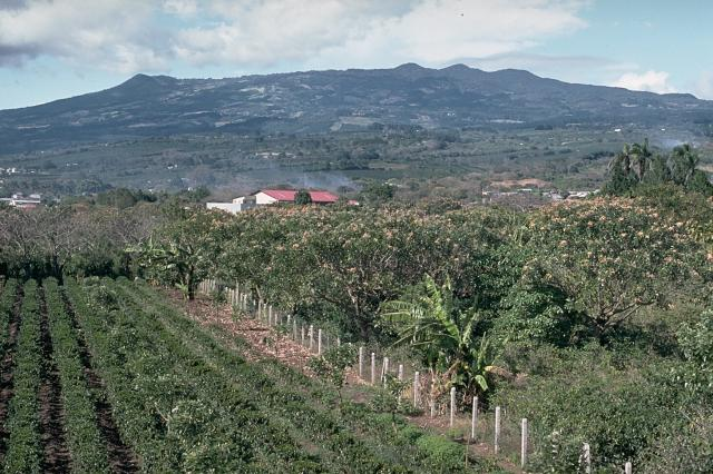 History of Costa Rica - Central Valley